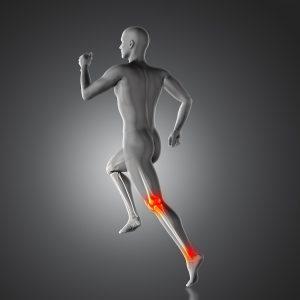 Deporte y estré oxidativo cellular AVD Reform Nutraceuticos